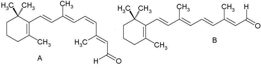 Re Why Are Isomers Important To Life